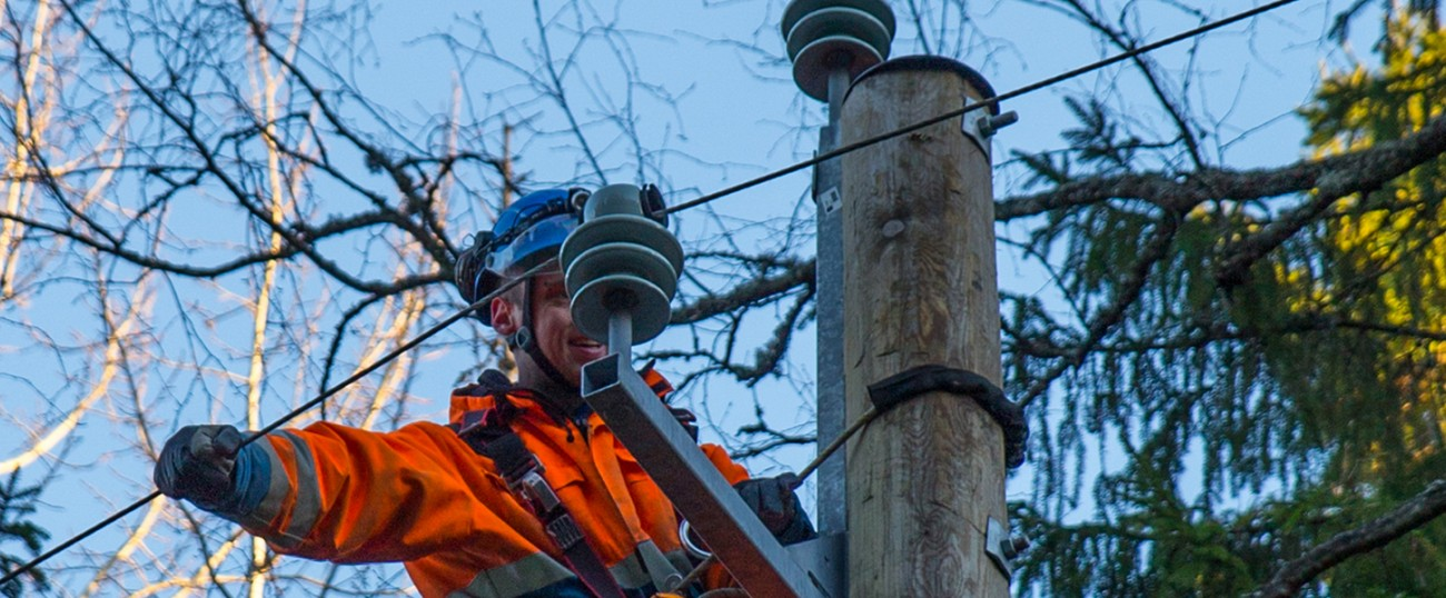 Report a damage in the electricity network